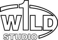 Wild One Music Studio Opening